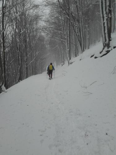 Ciaspolata a Sant'Anna Pelago-Gennaio
