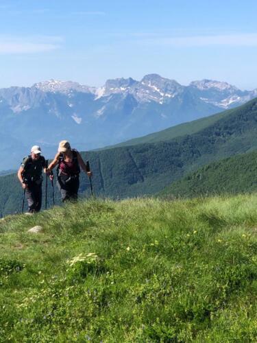 Monte Cavalbianco giugno