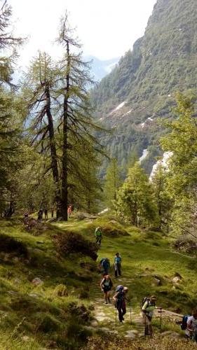 sempre verso Alpe Testanera