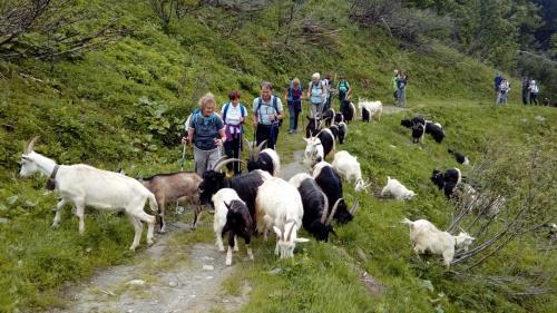 verso Alpe Pianmisura
