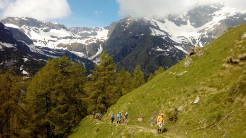 verso Alpe Testanera
